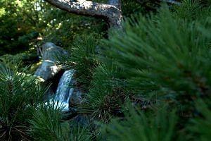 Waterval in de Japanse tuin in Hasselt