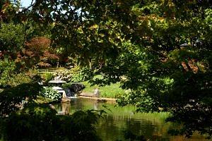Lantaarn in de Japanse tuin In hasselt